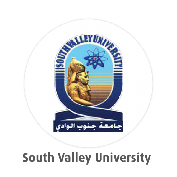 South Valley University